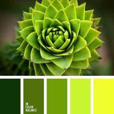 color verde guisante, de color verde lechuga, elección del color para un diseñador, matices del verde lechuga, selección de colores para decorar un salón, tonos verdes, verde claro, verde lechuga claro, verde lechuga vivo, verde oscuro.