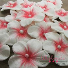 http://www.wholesalesugarflowers.com/1-1-2-charming-blossom-white-w-red-40-per-box/
