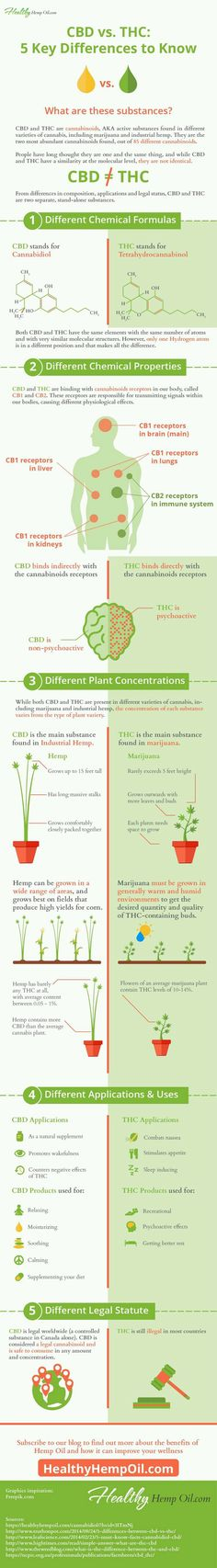 The Difference Between CBD and THC Infographic | GreenApple.md