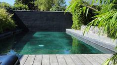 Une piscine qui embellit mon jardin