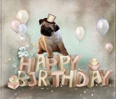 Happy Birthday Pug, Funny Happy Birthday Meme, Happy Birthday Wallpaper, Birthday Wishes For Friend, Happy Birthday Wishes Cards, Happy Birthday Quotes, Happy Birthday Images, Birthday Pictures, Birthday Greetings