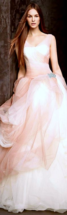 Vera Wang Ombre Tulle Gown