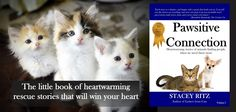 The little book of animal rescue stories- and every purchase helps save more lives! http://www.amazon.com/Pawsitive-Connection-Heartwarming-stories-animals-ebook/dp/B00NP6ORV4/ref=sr_1_1?ie=UTF8&qid=1426169605&sr=8-1&keywords=stacey+ritz