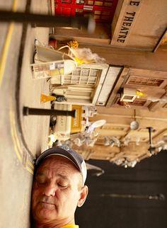 #MakingOf | Bill Murray, literalmente en el set de 'El fantástico Mr. Fox' www.beewatcher.es