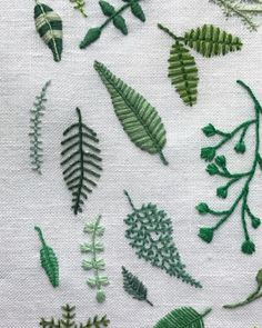 """3,276 Likes, 31 Comments - Brannon Addison (@happycactusdesigns) on Instagram: """"FERNS #happycactusembroidery"""""""