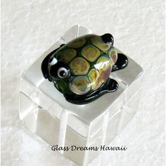 Glass Sea Turtle Bead, Hawaii Handmade Lampwork Turtle (Honu Glass... (€21) via Polyvore featuring green, integritytt and turtle
