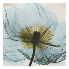 """Dream in Pale Blue"" Print by Albert Koetsier"