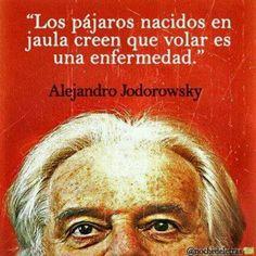 """""""Los pájaros nacidos en jaula creen que volar es una enfermedad"""". Alejandro Jodorowsky"""