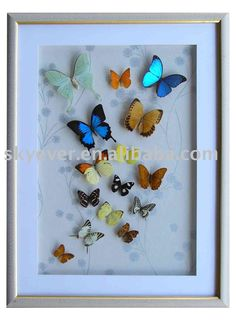shadow box art | Butterfly Shadow Box,View Shaeow Box,SkyEver Product Details from ...