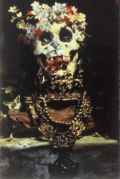 Skull still life