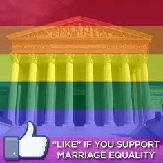 seekbi.com --- where bisexuality grows wings.
