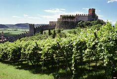 castello di Soave  e vigneti Verona Italy