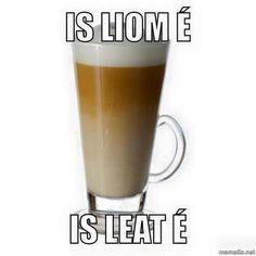 G Irish Puns, Irish Memes, Gaelic Words, Irish Language, Languages, Funny Things, Ireland, Funny Memes, Mugs