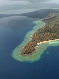 Quotidien d'expatriés ! Vie, culture, plages, lagon. Barrière de corail, dauphins, baleines, tortues. Infos déménagement, mutation - Caribou !