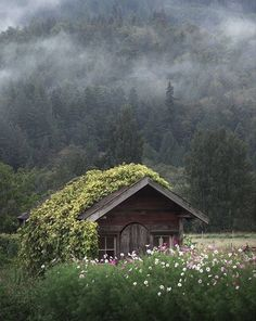 🌱Skagit Valley, Washington, US🚩Inspiring photo by Beautiful World, Beautiful Homes, Beautiful Places, Cottage In The Woods, Cabins In The Woods, Cabins And Cottages, Abandoned Places, Architecture, Belle Photo