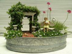 Sun fairy garden with micro needle point ivy, pink flower armaria and white isotoma ground cover | Yelp