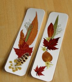 LEAF PEEPER'S DELIGHT Real Pressed Leaves & Wildflowers Bookmarks Set of 2. $9.50, via Etsy.
