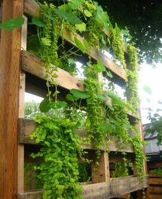Ideen für Holzpaletten-selber machen