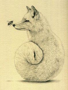 houseoffallingleaves:  fox? wolf?