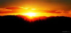 """""""Mi sono seduto sugli scalini a guardare l'alba. Era di un arancione vivido, sporcata da una massa gelatinosa e violacea che si stendeva come cotone sull'orizzonte, ma piú in alto il cielo era pulito e nero e qualche stella era ancora accesa"""" (ed. 2001, pag. 163)"""