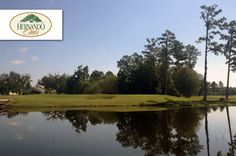 $25 for 18 Holes with Cart, Range Balls and $5 Off Your Next Round at Hernando Oaks #Golf and Country Club in Brooksville near Tampa ($53 Value. Includes Tax. Good Any Day, Any Time until January 15, 2016!)  Click here for more info: https://www.groupgolfer.com/redirect.php?link=1sqvpK3PxYtkZGdlcHmk