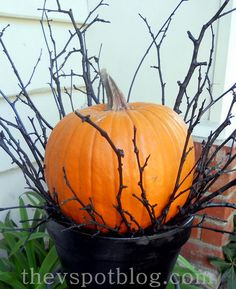 Spray paint branches found from outside to make a nice display for a pumpkin!