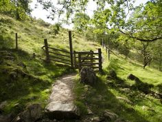 A kissing gate on the West Highland Way (in Scotland)