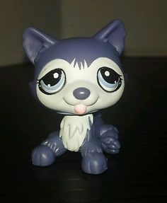 Littlest Pet Shop Dog Husky Dark Purple Blue Eyes #785 Preowned LPS