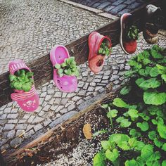 Friedhof der Kinderschühchen. (Berlin 2016) #berlin #berlinstagram #neukölln #neuköllnvibes #schuhe #kinderschuhe #spooky #igberlin #igersberlin #shoes #