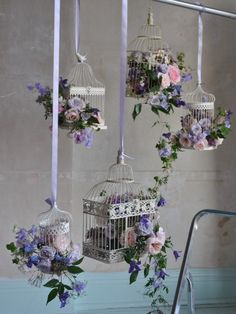 the only one possible use of a bird cage for me