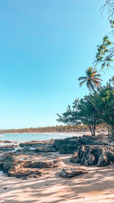 Beach in Boipeba - Brasil Wallpapers, Photo And Video, Videos, Beach, Water, Outdoor, Instagram, Brazil, Gripe Water
