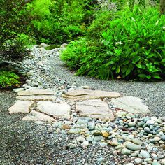Mix gravel with rocks of varying sizes to add interest in large areas. In the landscaping pictured here, this technique also solved a drainage problem. The gravel path, edged on the right with 'Libelle' hydrangea and a bank of maidenhair ferns, straddles a cluster of large, flat stones that creates a bridge over a seasonal runoff channel
