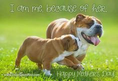 I am because of her'. happy mothers day