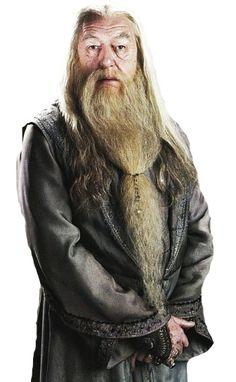 Альбус Персиваль Вульфрик Брайан Дамблдор (англ. Albus Percival Wulfric Brian Dumbledore) — профессор трансфигурации, директор Школы чародейства и волшебства Хогвартс, кавалер ордена Мерлина первого класса, Великий волшебник, Верховный чародей Визенгамота (Мудрейх в другом, неофициальном переводе), ...