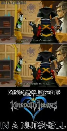 I probably had to watch three different explanation videos before I understood everything that was going on. Kingdom Hearts has got to be the most complicated series of games I've encountered so far. And I love it that way! -Tomboyhns