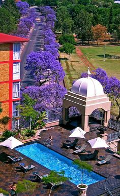 Sheraton hotel Pretoria, South Africa love the jacarandas. Pretoria, Places Around The World, Around The Worlds, Verona, Argentine, Camping, Africa Travel, Countries Of The World, Historical Sites