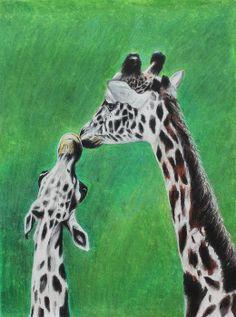 The Greeting by Jeanne Fischer #giraffes #africanAnimals #zooAnimals