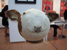 12 More Disturbing (and Funny) Examples of Taxidermy - ODDEE