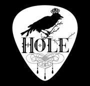 Hole I Pick, Guitar Picks