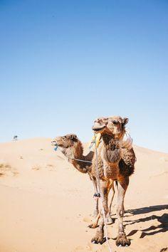 Magic in the desert.