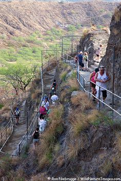 Visitors hiking up the trail to the top of Diamond Head Crater, Honolulu, Oahu, Hawaii. I had not realized that Diamond Head actually was a crater until I did this climb - just thought it was a rock face like the mountains at home. Hawaii Life, Aloha Hawaii, Hawaii Travel, Travel Usa, Oahu Vacation, Vacation Places, Dream Vacations, Places To Travel, Oh The Places You'll Go