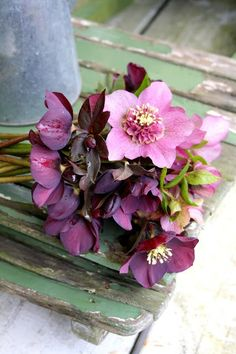 colour inspiration - flowers and wood