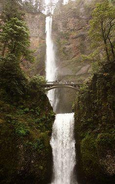 Multnomah Falls - Look at that!  An actual legit roadtrip stop ;-)