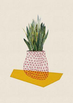 Houses and Plants | artnau