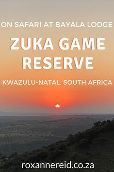 Visiting KwaZulu-Natal and looking for a South African safari? Find out why you should consider Bayala Lodge at the Big 5 Zuka Private Game Reserve in Zululand. See the Big 5 and more, find lots of things to do: game drives, bush walks, nature, a spa, a rhino experience, swim in the pool and enjoy good food in the restaurant, or plan a wedding. #KwaZuluNatal #KZN #safari Private Safari, All About Africa, Kwazulu Natal, Slow Travel, Kruger National Park, Game Reserve, Wild Dogs, African Safari, Africa Travel