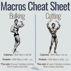 MACROS CHEAT SHEET FOR BULKING AND CUTTING - You want to bulk or you want to cut? Here are the macros you need to be eating. - The truth is the process is very similar. Get a minimum protein of so if you're that's of protein per day. Fitness Workouts, Weight Training Workouts, Gym Workout Tips, At Home Workouts, Fitness Motivation, Training Tips, Muscle Fitness, Gain Muscle, Build Muscle