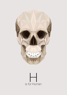 El alfabeto animal de Linn Maria Jensen – Blog de diseño gráfico y creatividad.