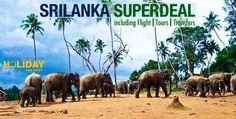 اكتشفوا جمال طبيعة سريلانكا مع 3 ليالٍ في كاندي وكولومبو تشمل فنادق 3، 4 و 5 نجوم ، تذاكر طيران ذهاب وعودة وفطور يومي. تتوفر 3 باقات لا تقاوم ابتداءً من 2590 درهم للشخص.