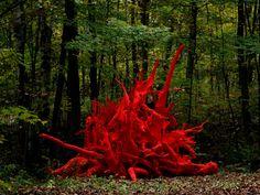Installation – Shayne Dark - Visual Artist