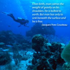 """From birth, man carries the weight of gravity on his shoulders. He is bolted to earth. But man has only to sink beneath the surface and he is free."" ~Jacques-Yves Cousteau."